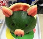 3 Piggy melon